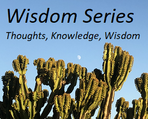 Post image for Wisdom Series: Thoughts, Knowledge, and Wisdom